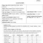 ISO 11930 Analiz Sonuçları